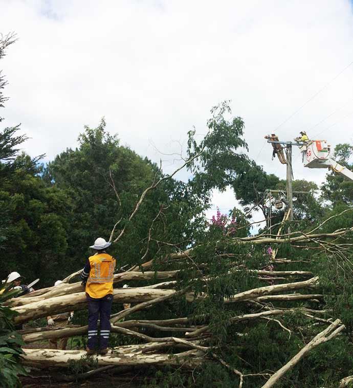 Crews working on powerlines Maleny Road, Landsborough (2)